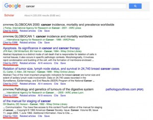 A organização de resultados com preferência para citações não é coincidência. Fonte: Google Scholar.