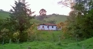 Zona_Rural_Carvalhos,MG