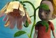 A-maior-flor-do-mundo