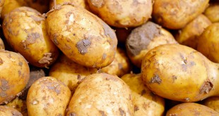potatoes-2329648_1920