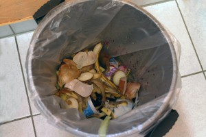 food-waste-garbage-can-animal-source-foods-household-waste-1344515-pxhere.com